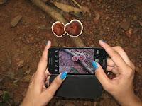 Mesmerizing Goa... Netravali trail with Trek O Phy 1