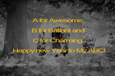 Advance Happy New Year Wishes SMS for Facebook Friends