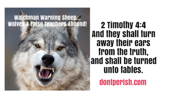 Watchman Warning Sheep About Wolves and False Teachers