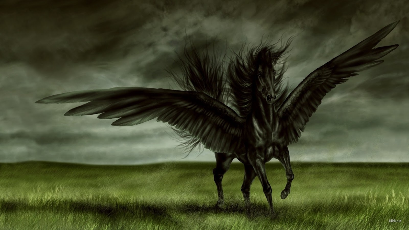 All wallpapers black horse new best hd wallpapers 2013 - Most beautiful dark wallpapers ...
