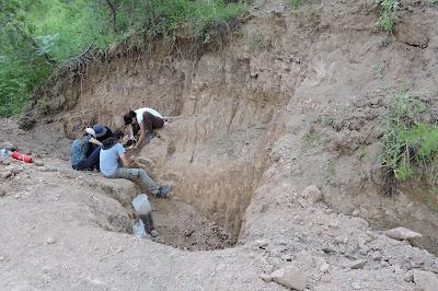 """Νέες ανασκαφές στη """"ζούγκλα"""" της Εύβοιας"""