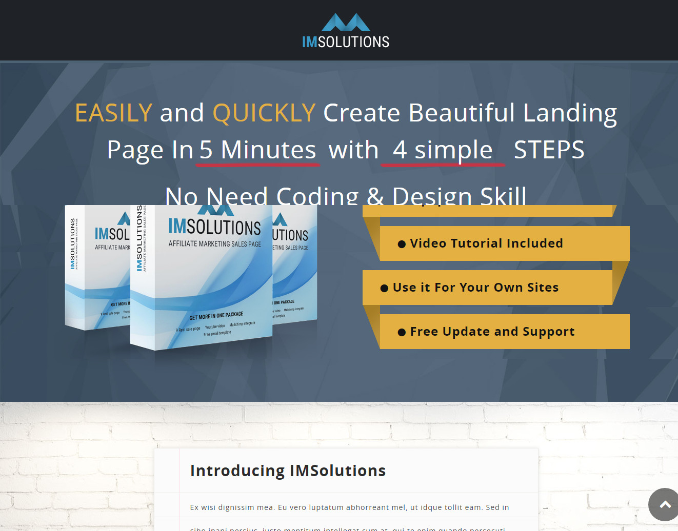 IMSolution Affiliate Marketing Theme for Product and Sale Pages