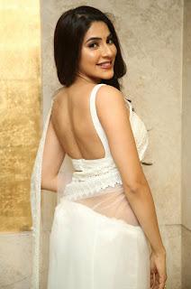 Nikki Tamboli in transparent white saree with sleeveless blouse Navel Queens