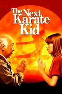 Watch The Next Karate Kid Online Free in HD