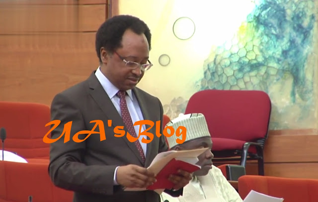 LOOTERS LIST | No Saints In APC Or PDP – Shehu Sani