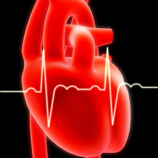 American Heart Association West Palm Beach
