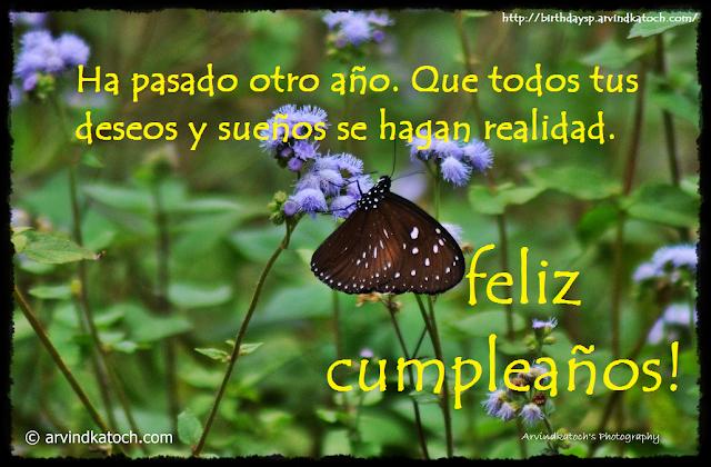 Tarjeta, cumpleaños, todos, deseos, sueños, hagan, realidad,