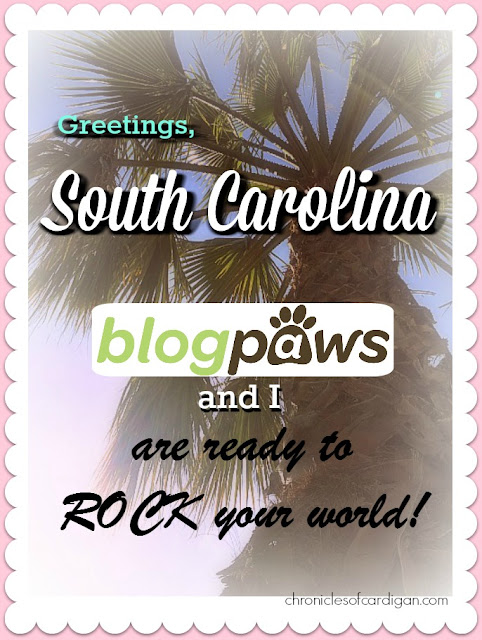 South Carolina beachy vintage postcard with caption: Greetings, South Carolina BlogPaws and I are ready to rock your world