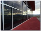 WINDOW TINTING For Business