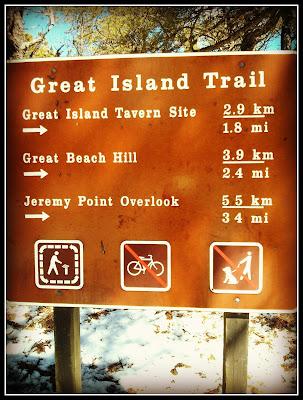Great Island Trail: Cape Cod