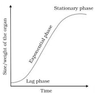 Sigmoid curve Graph