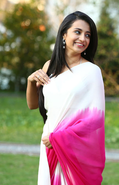 Trisha Krishnan Cute images In Saree epic collection