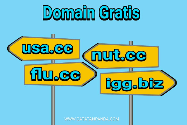 Cara Membuat Domain Gratis Usa.cc Flu.cc Nut.cc Igg.biz