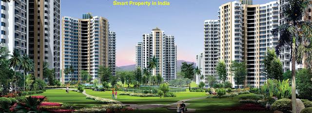 Property in Noida