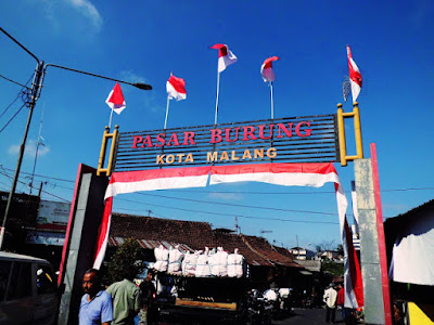 Travel Malang Jogja, Pasar Burung Splendid, 0821-316-7070-8, Travel Jogja Malang