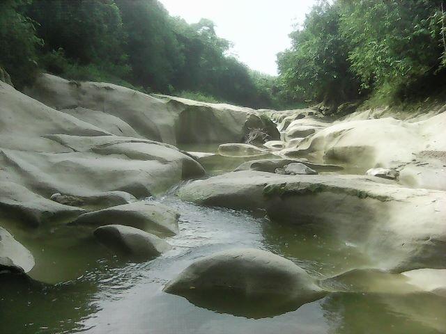 Kedung Nglantung - Sugihwaras, Bojonegoro_Photo by Ddk S.