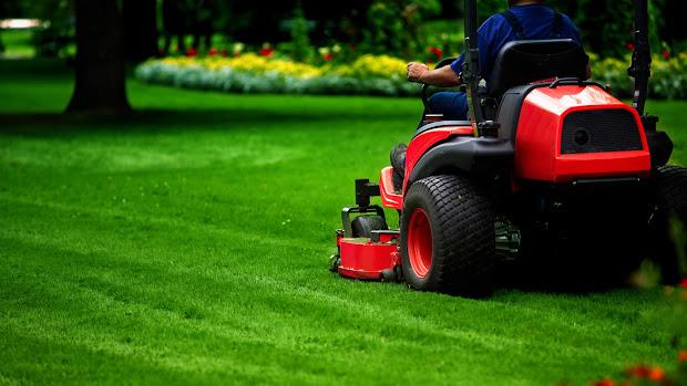 lawn care tips winter 2017