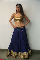 Malvika Raaj in Golden Choli and Skirt at Jayadev Pre Release Function 2017 ~  Exclusive 076.JPG