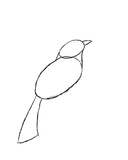 how to a draw a bird