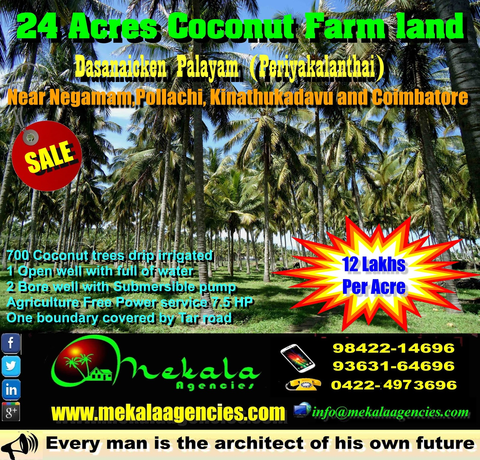 24 ACRES COCONUT FARM FOR SALE Near POLLACHI-KINATHUKADAVU