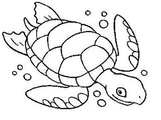 Desenhos De Tartarugas Marinhas