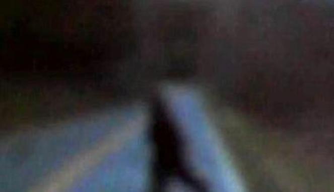 107848_penampakan-bigfoot_663_382.jpg