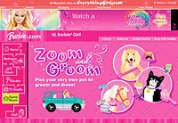 Barbie Zoom and Groom
