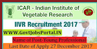 Indian Institute of Vegetable Research Recruitment 2017– 21 Young Professional