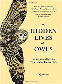 The Hidden Lives Of Owls PDF