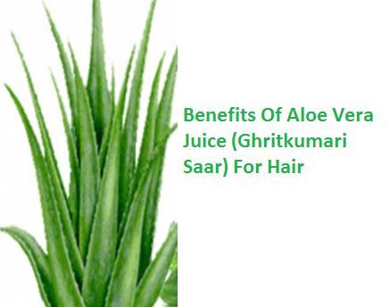Benefits Of Aloe Vera Juice (Ghritkumari Saar) For Hair