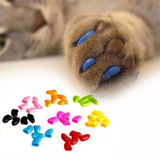 Kék színű macskaköröm