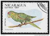 green parakeet on a postage stamp