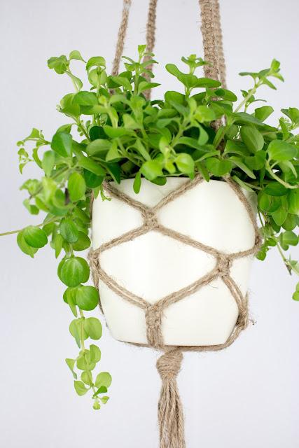 DIY | Makramee Blumenampel aus Juteschnur oder Paketschnur selber knüpfen