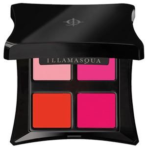 Illamasqua Lipstick Palette Review