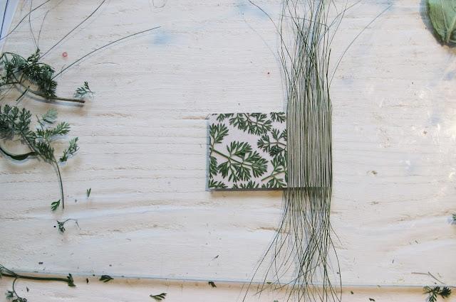 Atelier - Art plante énergie - Lily Wanat