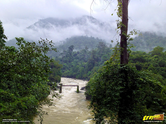 Gundya Rivulet by the Shiradi Ghat National Highway NH-48 (New No.: NH-75) through Western Ghats, Karnataka