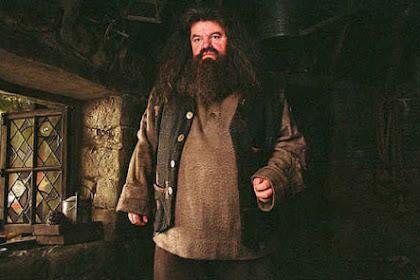 Pertempuran Hagrid dengan Nyeri Sendi Selama Bertahun-tahun