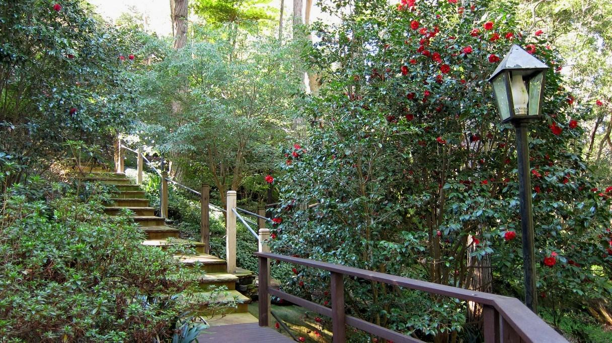 secret garden rose bay sydney - photo#21