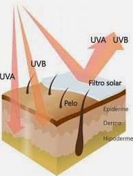raios UVA e UVB atingindo a pele