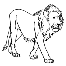 Best Male Lion Coloring Pages