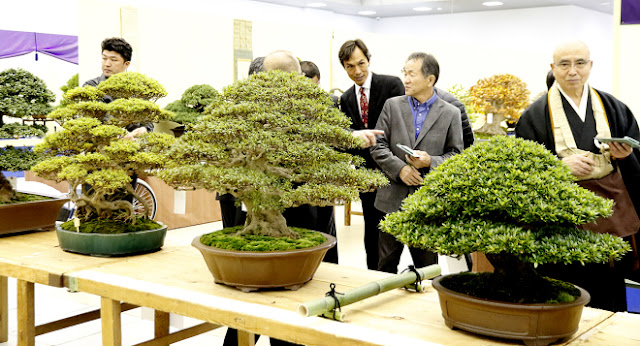 Numerous visitors admiring Bonsai on display at Takan Ten exhibition held in Kyoto, Japan