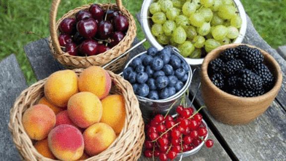 Buah buahan kaya anthocyanin untuk kanser