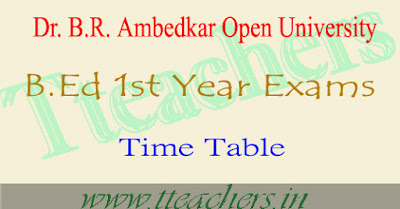 Ambedkar Open university B.Ed 1st year theory exam time table 2016-2017 BRAOU