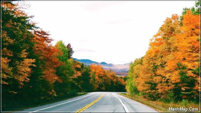 con đường tháng 9 mùa thu thật đẹp