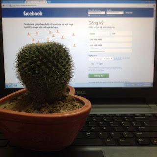 Sladar Gai vào lại facebook vì nó thiết yếu