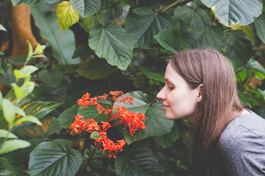 Varpublogit testasi kasvitieteellisen puutarhan retkikohteena ja suosittelee lämpimästi! Sivustollamme lisää.