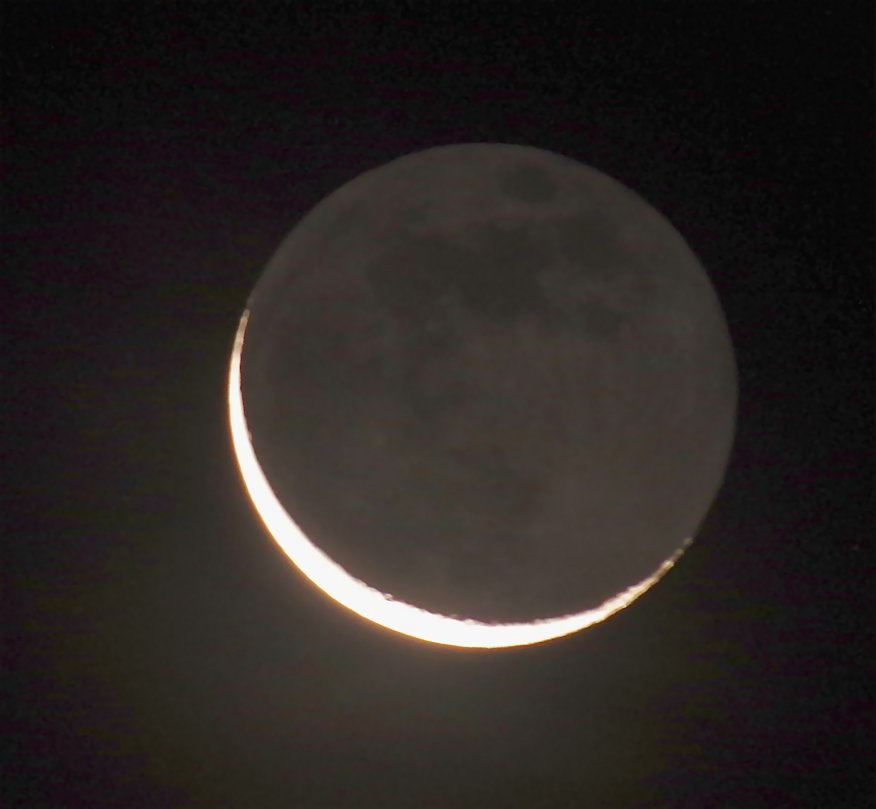 Old Moon In New Moons Arms >> Birds Of The Heath The New Moon In The Old Moon S Arms