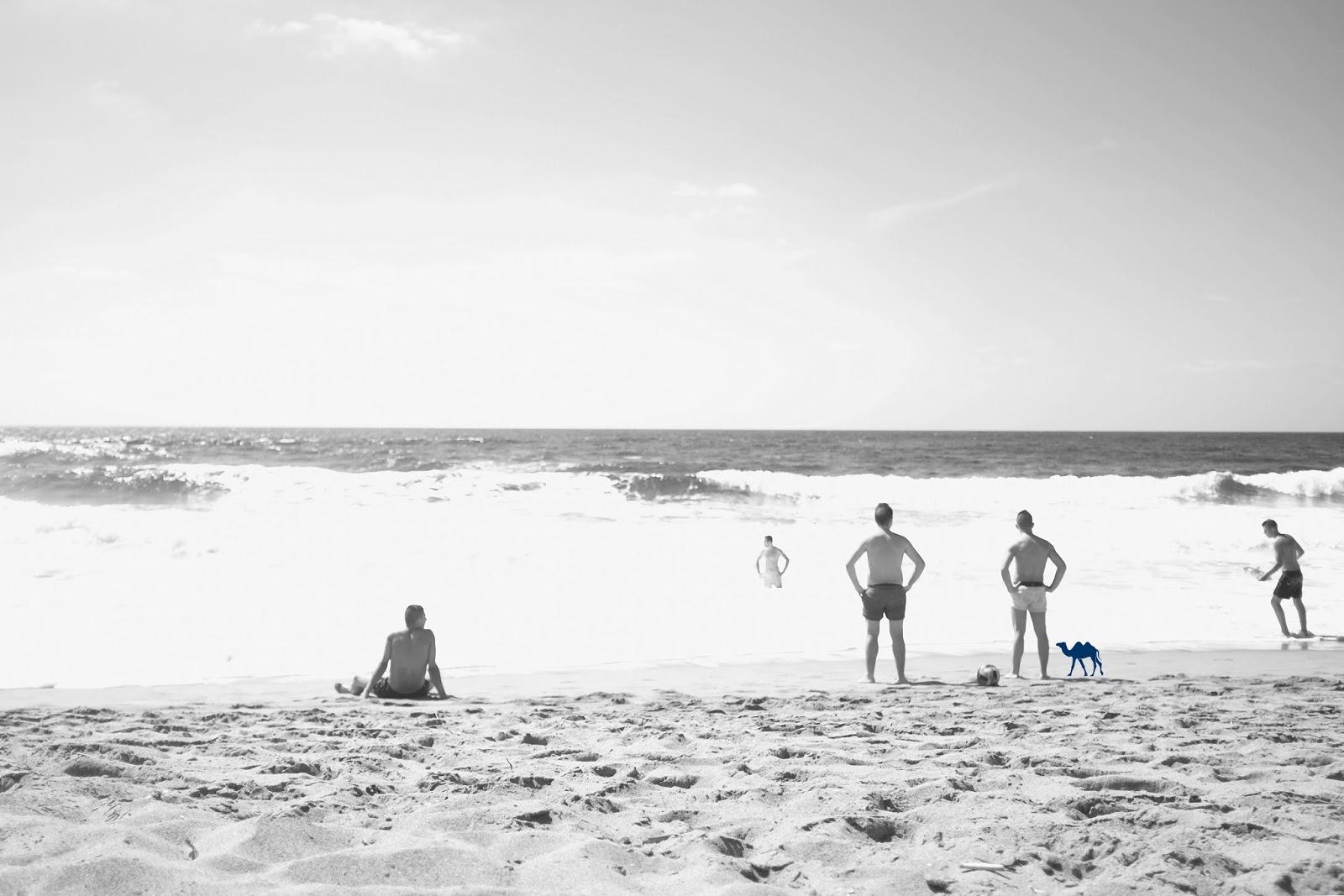 Le Chameau Bleu - Spiaggia di Porte Alabe - Vague