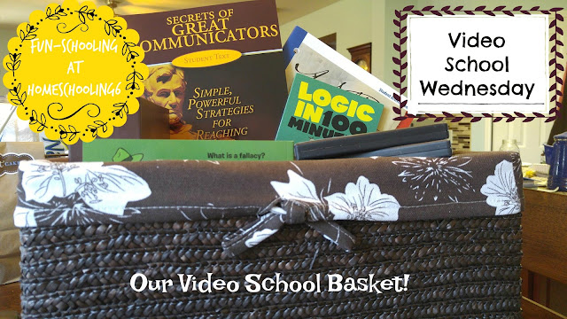 Fun Schooling Video Basket