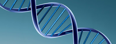 La genetica, rama de la biologia